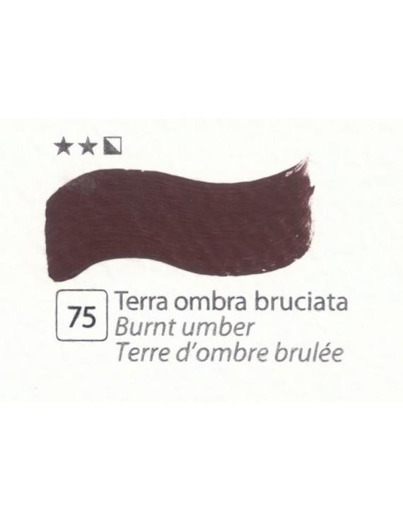 COLORI A OLIO Serie Accademia N.75 TERRA OMBRA BRUCIATA